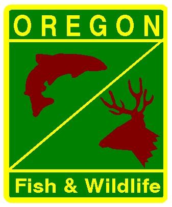 odfw fishing and hunting license breech oregoncoastdailynews
